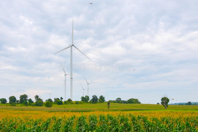 De windturbine maakte Duurzame energie op gebied, blauwe hemel en wolkenachtergrond in Chaiyaphum Thailand stock fotografie