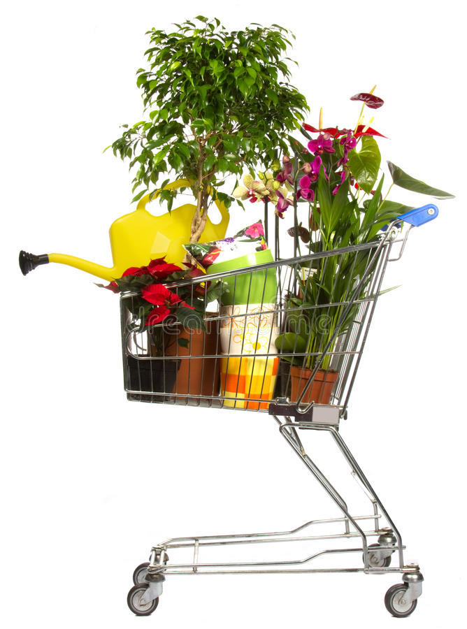 De winkel van bloemen backet stock fotografie