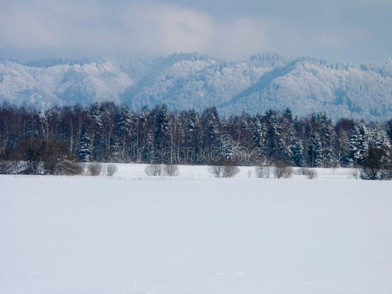 Download De winter stock afbeelding. Afbeelding bestaande uit reis - 285165