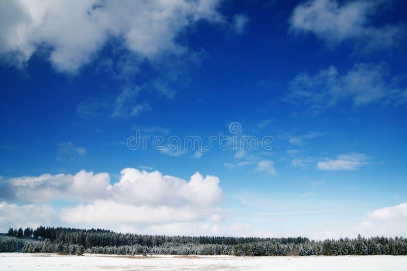 De winter stock foto