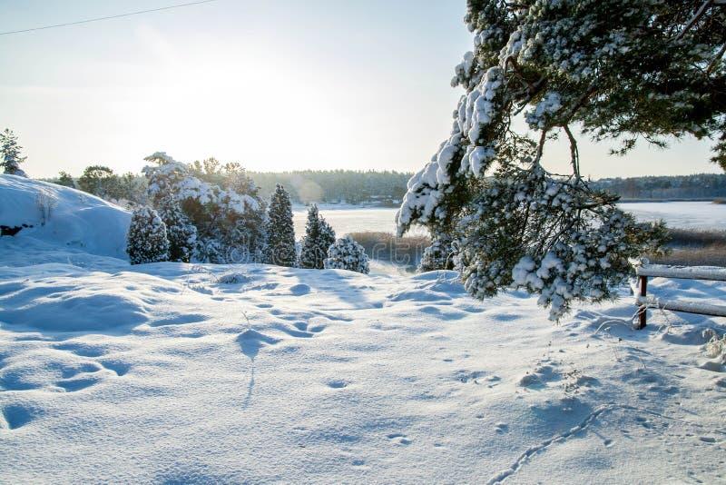 De winter 3 stock afbeelding
