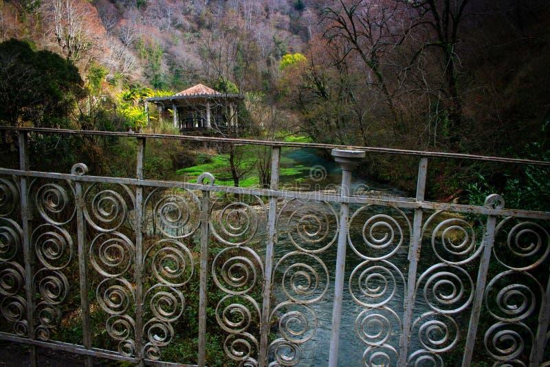 De winter in Abchazië royalty-vrije stock foto