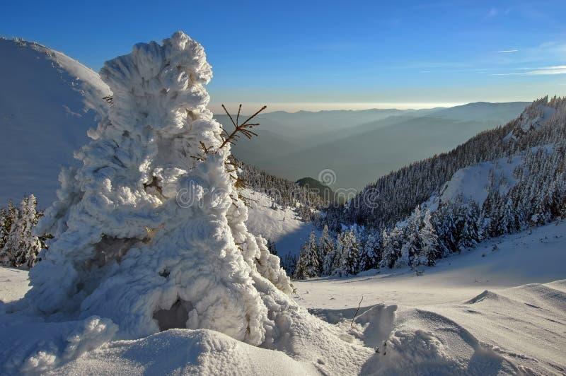 De winter bergachtig landschap royalty-vrije stock fotografie