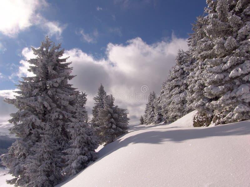 De winter in Bergen Ciucas royalty-vrije stock afbeelding