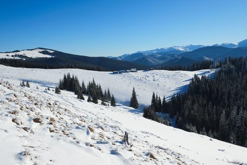 De winter in de bergen Koude zonnige dag met duidelijke blauwe hemel royalty-vrije stock fotografie