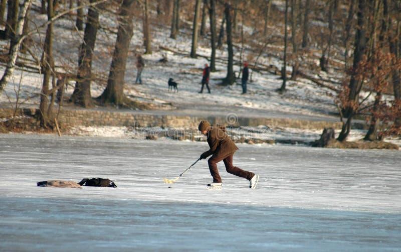 De winter in Berlijn stock afbeelding