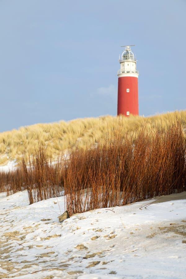 Download De winter bij de kust stock afbeelding. Afbeelding bestaande uit duinen - 29508791