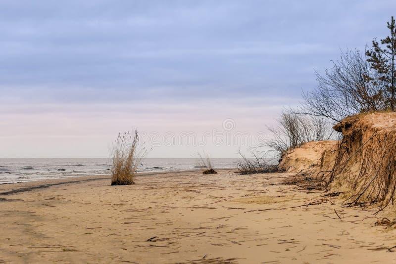 De winter bij Oostzee in Riga stock afbeeldingen