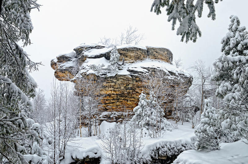De winter bosrots stock fotografie