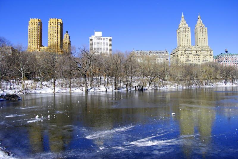 De winter in Central Park royalty-vrije stock fotografie