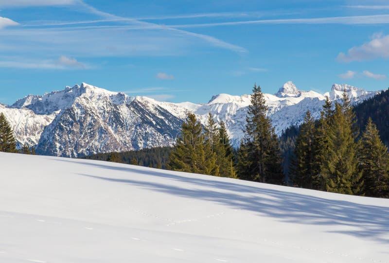 De winter in de Alpen stock afbeeldingen
