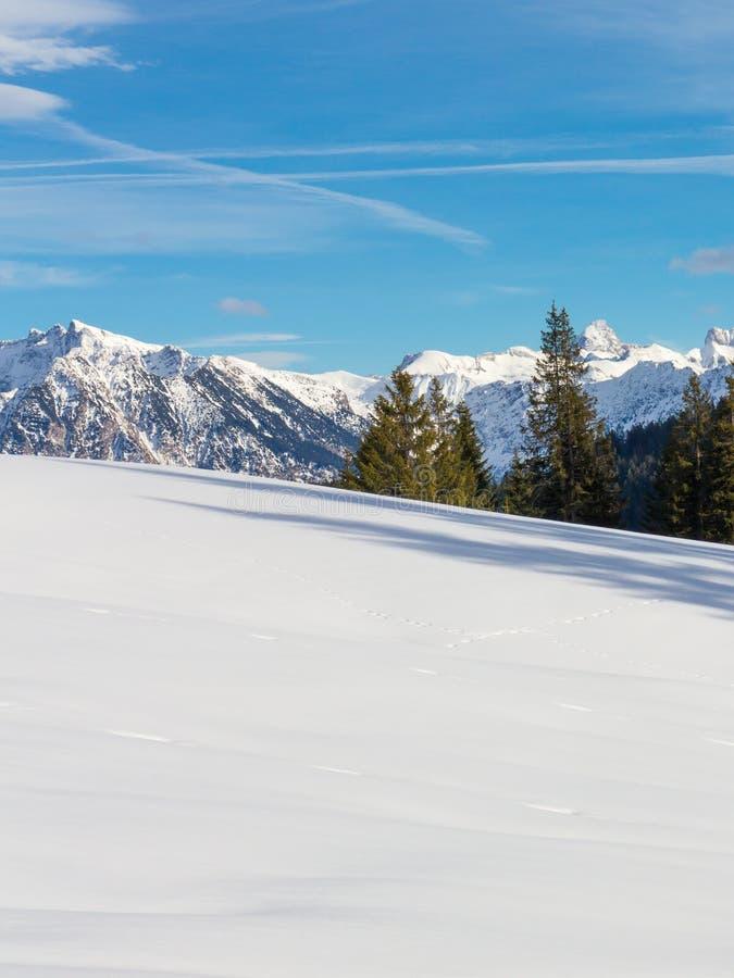 De winter in de Alpen royalty-vrije stock afbeelding