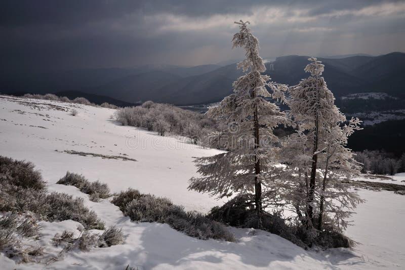 De winter in de berg royalty-vrije stock fotografie