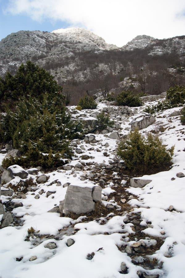 De winter in de bergen stock foto