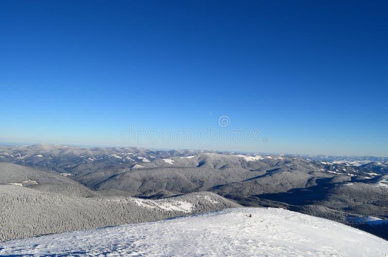 De winter de Karpaten royalty-vrije stock fotografie