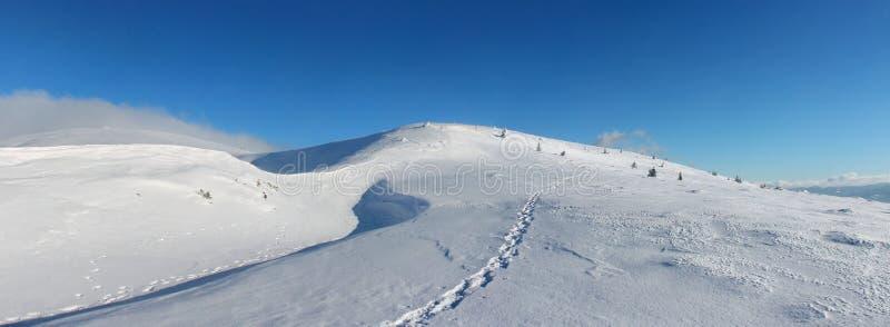 De winter, de Oekraïne, berg, Karpatische zonsondergang, bergketen, landschappen, toerisme, sneeuwreis, in openlucht, hemel, mist stock foto