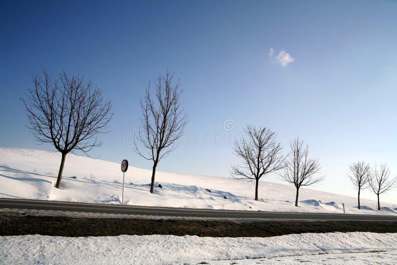 De winter in Denemarken stock fotografie