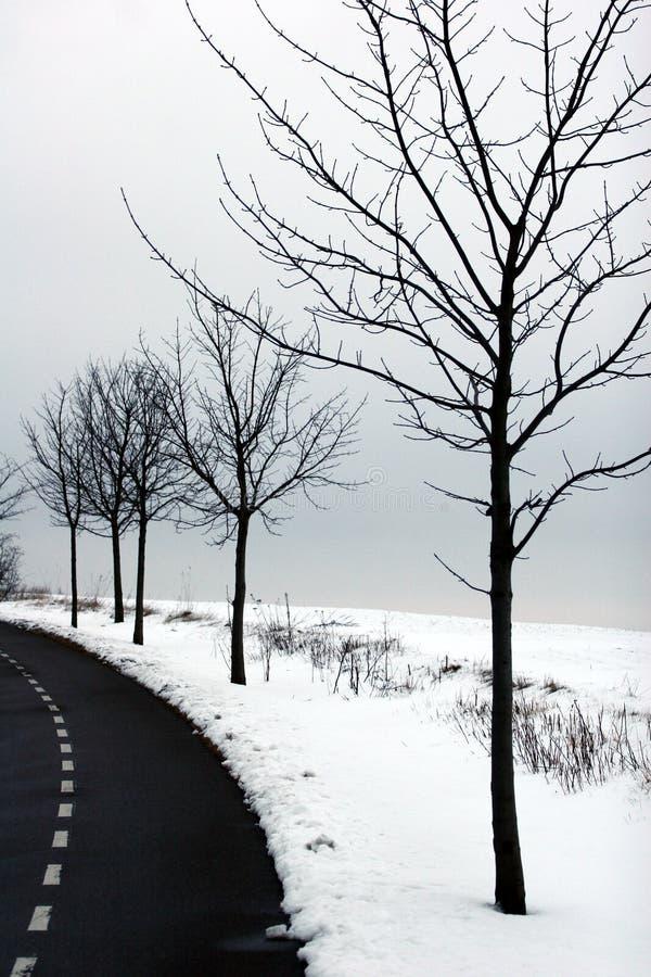 De winter in Denemarken royalty-vrije stock foto