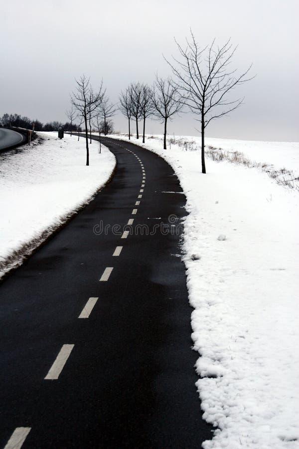 De winter in Denemarken stock afbeeldingen