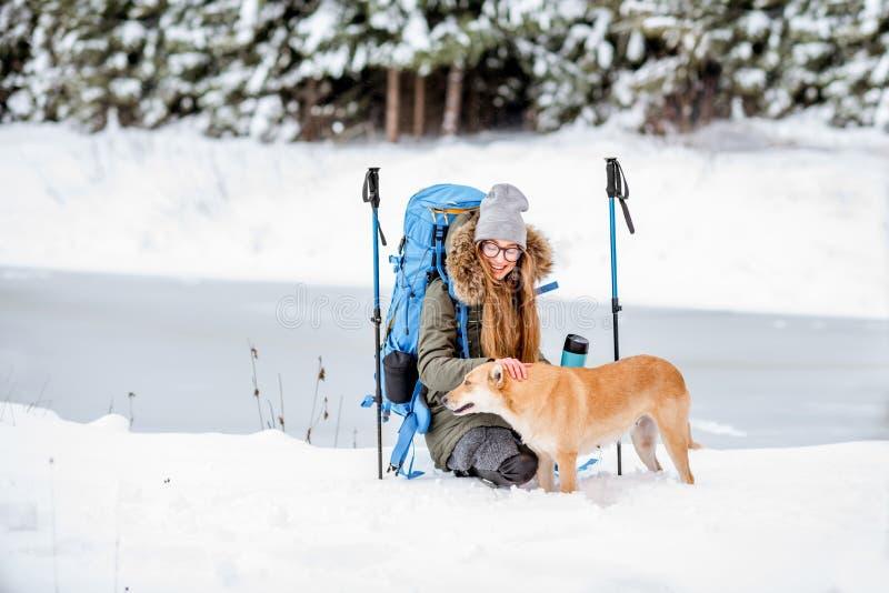 De winter die in het bos wandelen royalty-vrije stock afbeeldingen