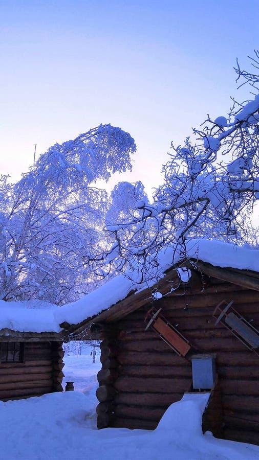 De winter en sneeuw royalty-vrije stock afbeelding