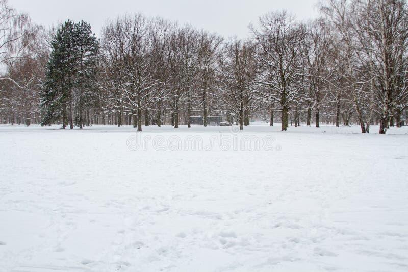 De winter en sneeuw in Berlijn royalty-vrije stock fotografie