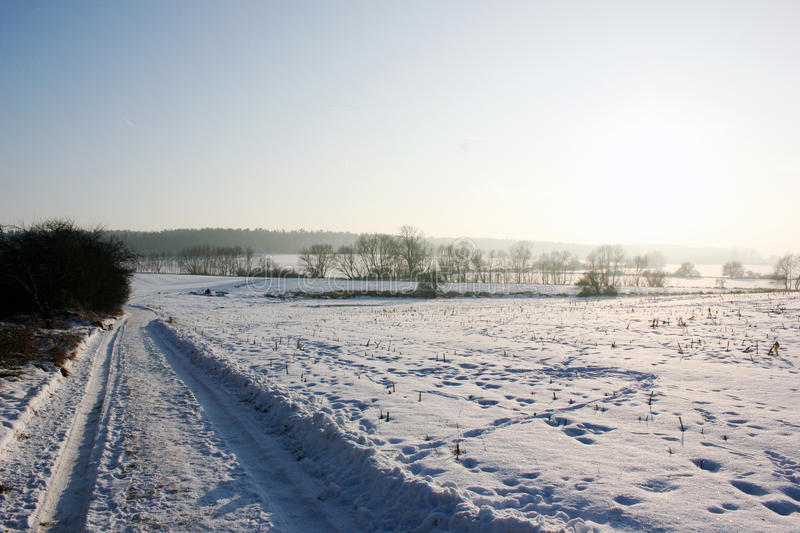 De winter field stock fotografie