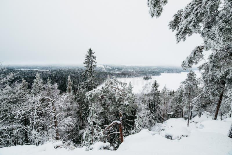 De winter in Finland omvat in sneeuw stock afbeeldingen
