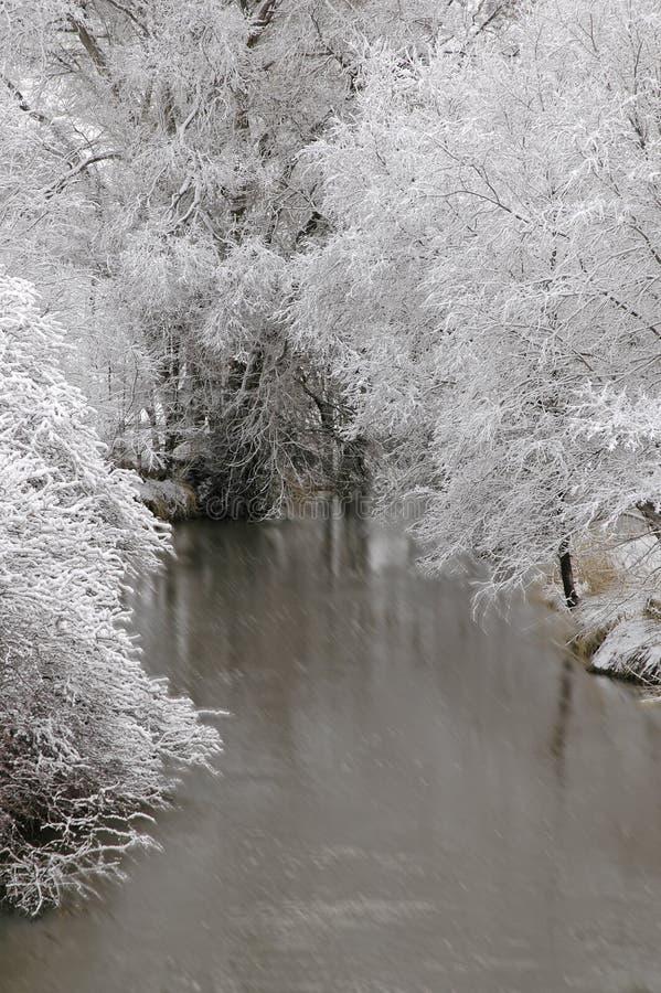 De winter Forrest door Rivier royalty-vrije stock foto's