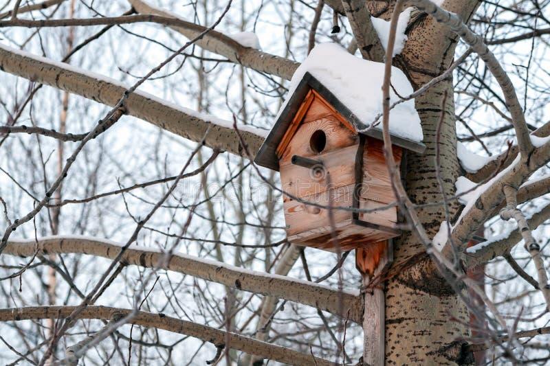 In de winter, hangt een houten vogelhuis dat met sneeuw wordt behandeld op de boom in afwachting van de lente stock fotografie
