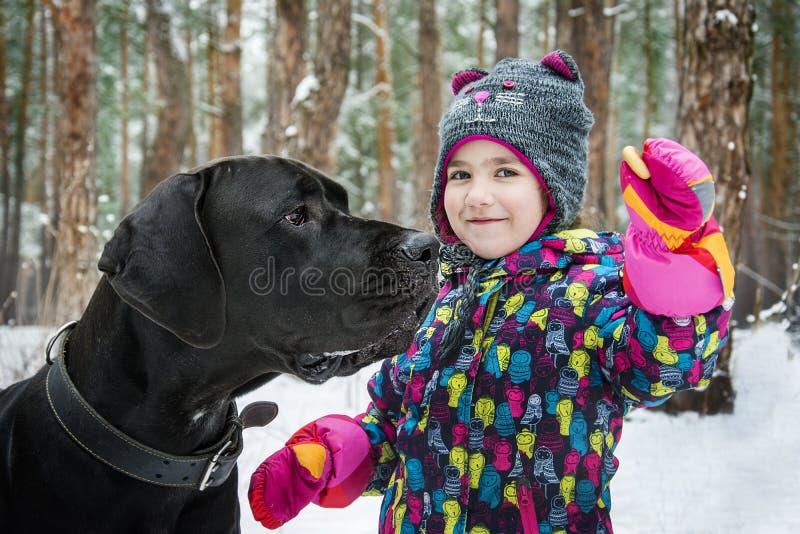 De winter in het hout plaagt een klein meisje een grote hond met een ongezuurd broodje royalty-vrije stock afbeeldingen