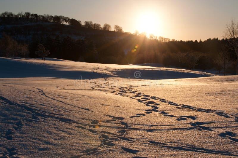 De winter in het land royalty-vrije stock fotografie