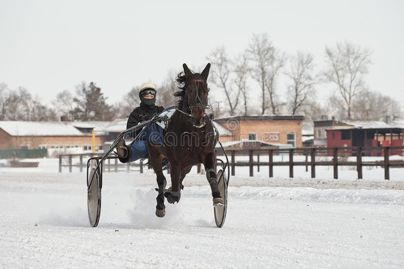 De winter Het lopen is een test van dravers royalty-vrije stock afbeelding