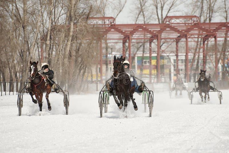 De winter Het lopen is een test van dravers royalty-vrije stock foto