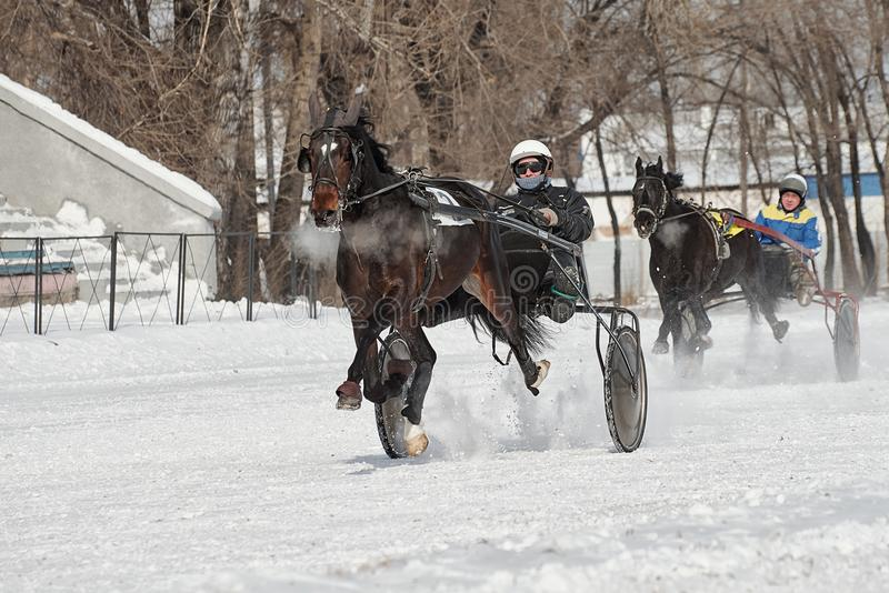 De winter Het lopen is een test van dravers royalty-vrije stock afbeeldingen