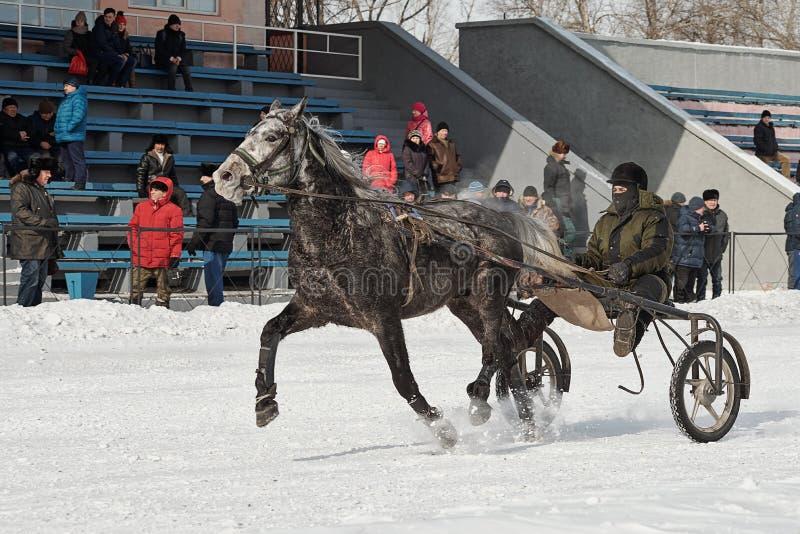 De winter Het lopen is een test van dravers stock foto's