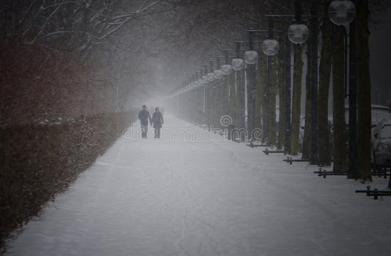 De winter in het Park van de Stad van Berlijn met lopende Mensen royalty-vrije stock fotografie