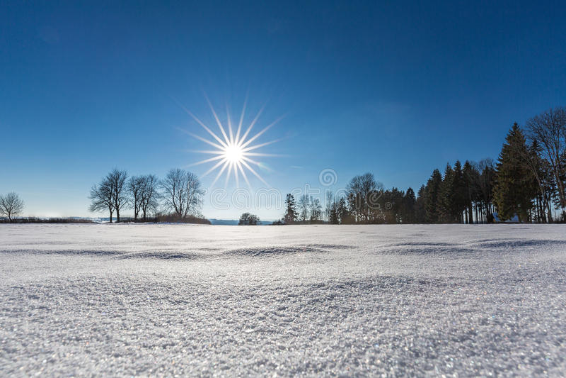 De winter in het Zwarte Bos stock afbeeldingen