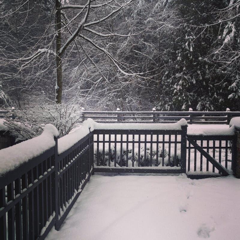 De winter is hier 2 royalty-vrije stock foto