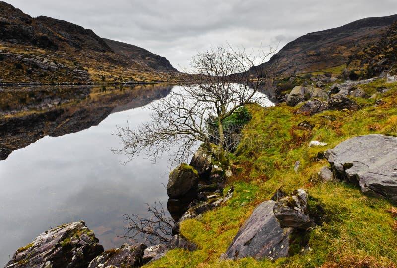 De winter in Ierland royalty-vrije stock afbeeldingen