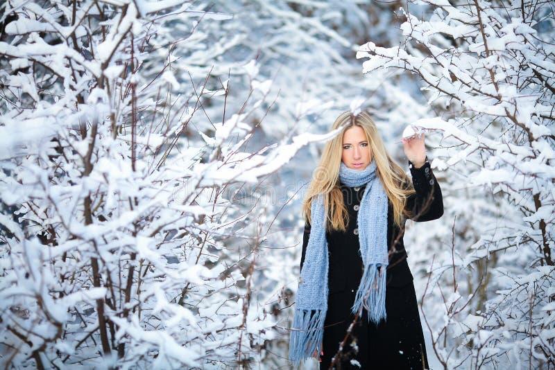 De winter Jong meisje die sneeuwbos lopen en bij de camera glimlachen Grote stemming royalty-vrije stock afbeelding