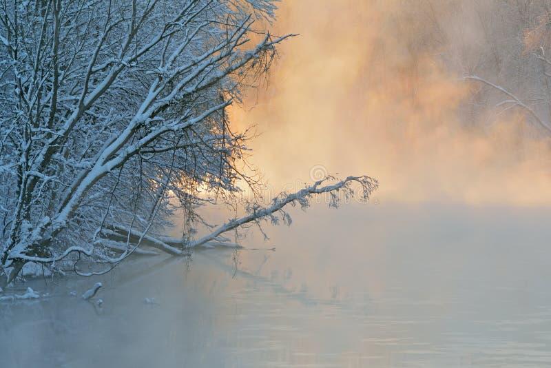 De winter, Kalamazoo-Rivier in Mist royalty-vrije stock afbeelding
