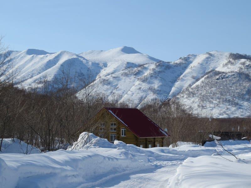 De winter in Kamchatka Sneeuw en vorstweergeven van heuvels en bomen stock afbeelding