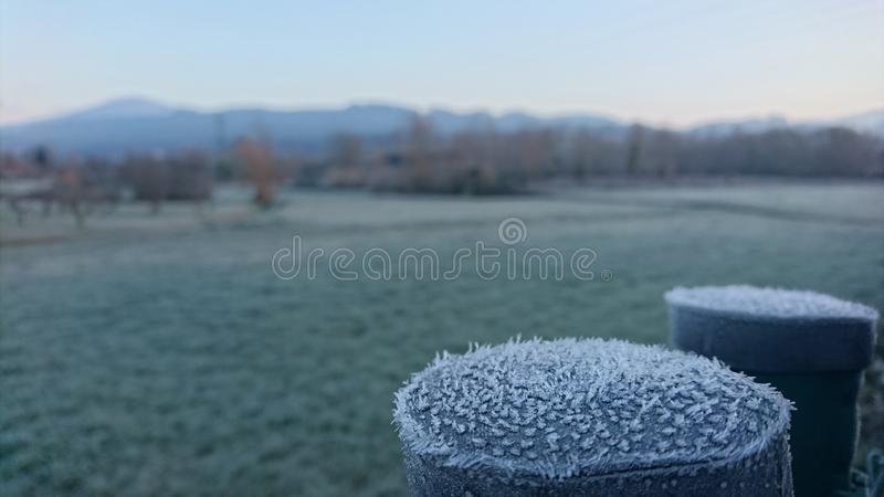 De winter komt Vorstweide stock afbeelding