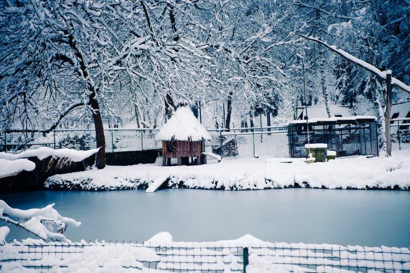 De winter lendscape stock afbeelding