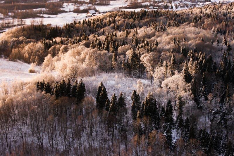 De winter in Litouwen stock afbeeldingen