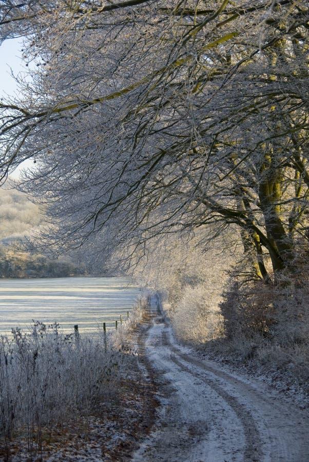 De winter loopt onderaan een landsteeg. stock afbeelding