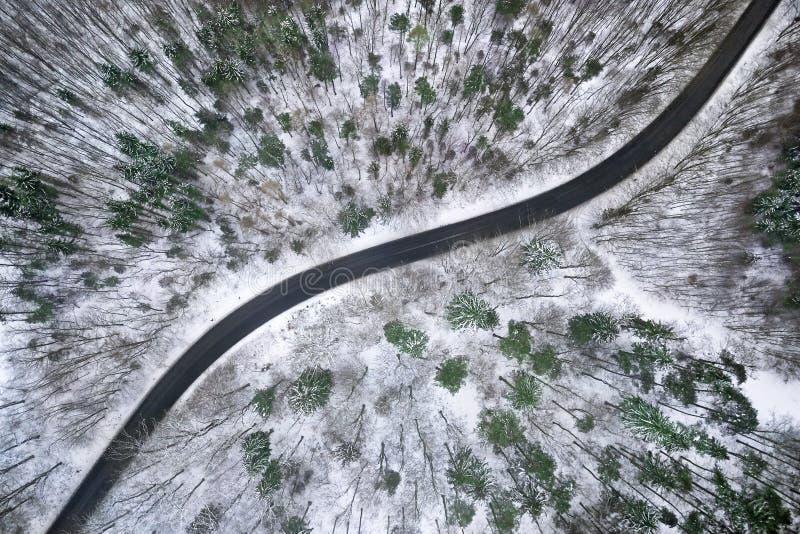 De winter luchtmening van weg in bos royalty-vrije stock afbeelding
