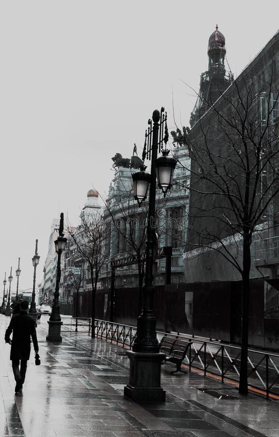 De winter in Madrid royalty-vrije stock afbeelding