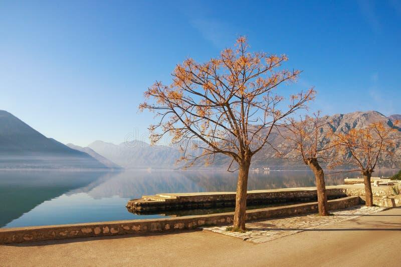 De winter Mediterraan landschap met Chinaberry-bomen royalty-vrije stock afbeelding